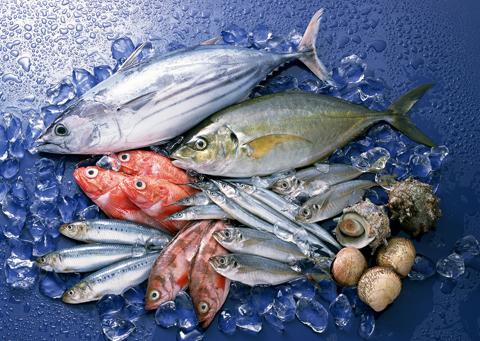 Chọn cá biển nên để ý đến mắt cá