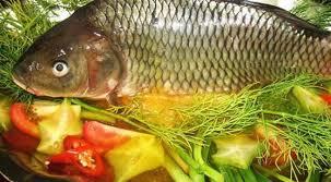 Làm sao để tẩy vị đắng của mật cá